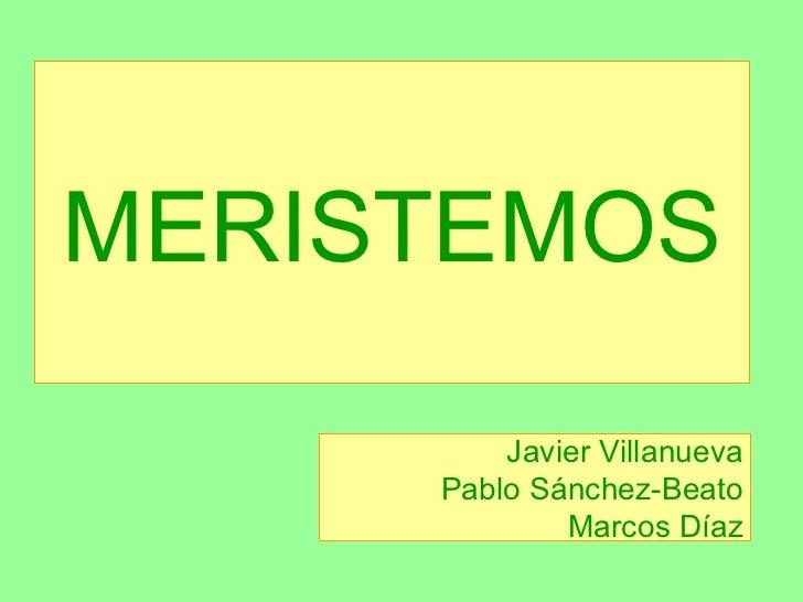 MERISTEMOS Javier Villanueva Pablo Sánchez-Beato Marcos Díaz