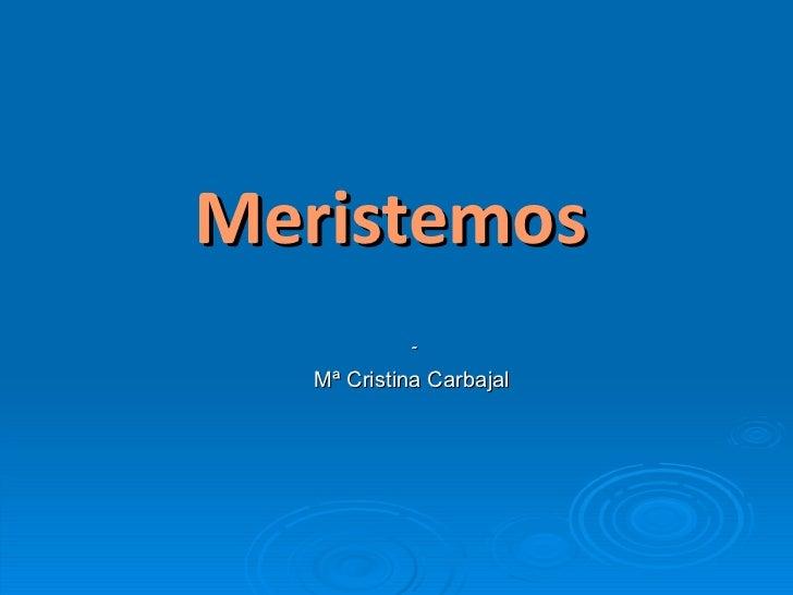 Meristemos - Mª Cristina Carbajal