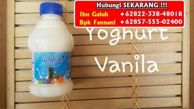 Minuman Yoghurt Cimory Untuk Diet