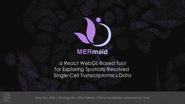 a React WebGL-Based Tool for Exploring Spatially Resolved Single-Cell Transcriptomics Data Jean Fan, PhD | Zhuang Lab | Bi...