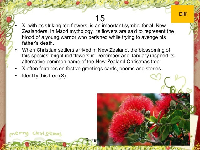 George Zacharia 15 • X, with its striking red flowers, is an important symbol for all New Zealanders. In Maori mythology, ...