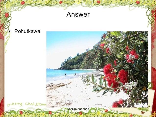 George Zacharia Answer • Pohutkawa