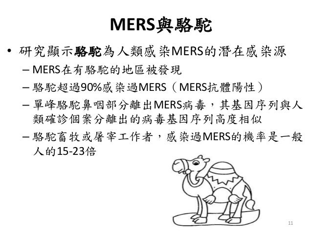 MERS與駱駝 • 研究顯示駱駝為人類感染MERS的潛在感染源 – MERS在有駱駝的地區被發現 – 駱駝超過90%感染過MERS(MERS抗體陽性) – 單峰駱駝鼻咽部分離出MERS病毒,其基因序列與人 類確診個案分離出的病毒基因序列高度相似...