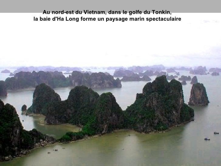 Au nord-est du Vietnam, dans le golfe du Tonkin,  la baie d'Ha Long forme un paysage marin spectaculaire