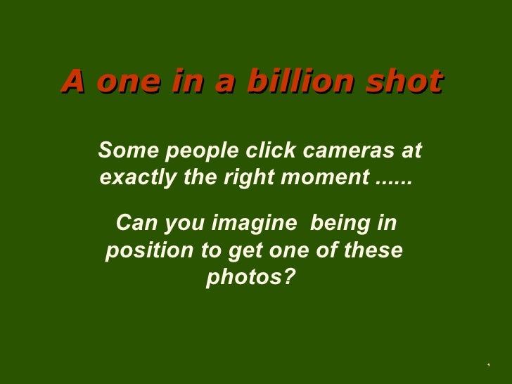 A one in a billion shot    Some people click cameras at   exactly the right moment ......    Can you imagine being in   po...