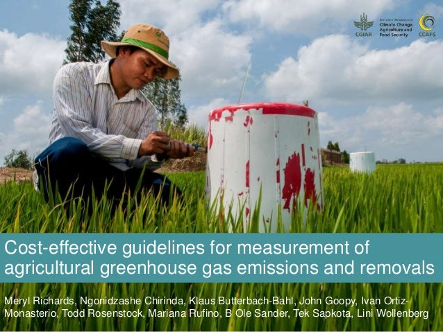 Cost-effective guidelines for measurement of agricultural greenhouse gas emissions and removals Meryl Richards, Ngonidzash...