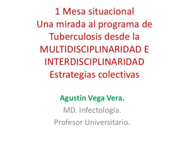1 Mesa situacional Una mirada al programa de Tuberculosis desde la MULTIDISCIPLINARIDAD E INTERDISCIPLINARIDAD Estrategias...