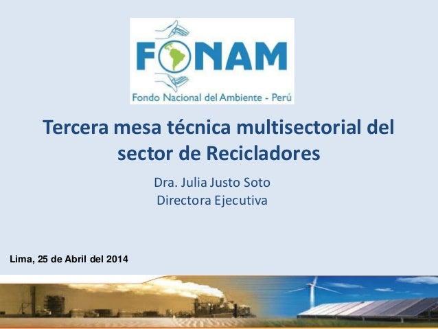 Dra. Julia Justo Soto Directora Ejecutiva Lima, 25 de Abril del 2014 Tercera mesa técnica multisectorial del sector de Rec...