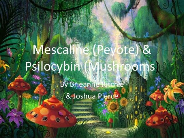 Mescaline (Peyote) &Psilocybin (Mushrooms)By Brieanne Ritchie& Joshua Pierce