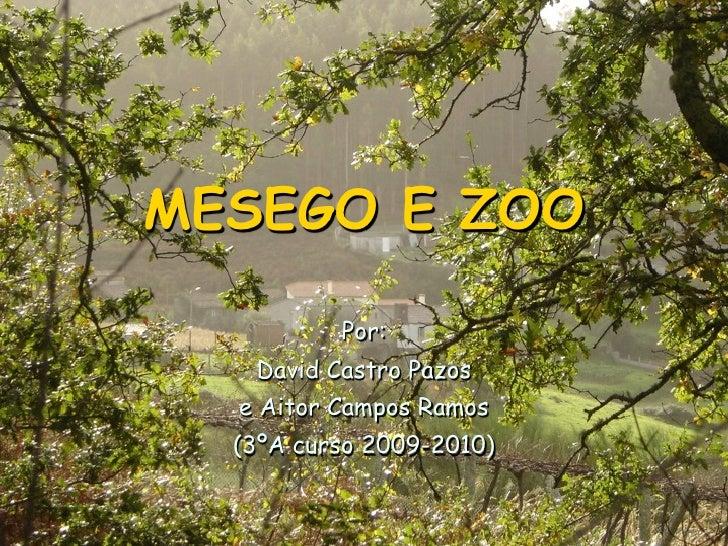 MESEGO E ZOO            Por:    David Castro Pazos   e Aitor Campos Ramos   (3ºA curso 2009-2010)