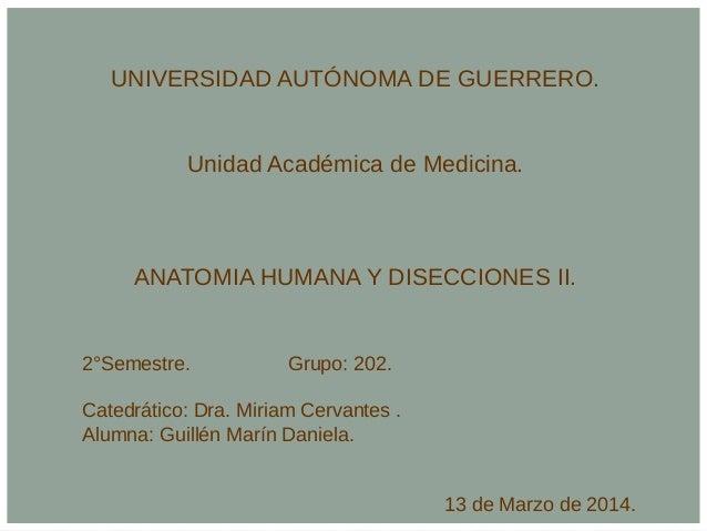 UNIVERSIDAD AUTÓNOMA DE GUERRERO. Unidad Académica de Medicina. ANATOMIA HUMANA Y DISECCIONES II. 2°Semestre. Grupo: 202. ...