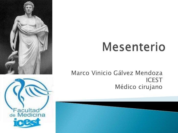 Marco Vinicio Gálvez Mendoza                        ICEST              Médico cirujano