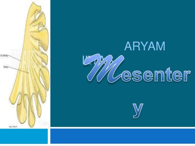 ARYAMILYAS