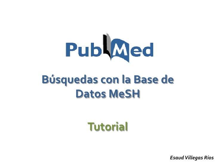 Búsquedas con la Base de      Datos MeSH          Tutorial                         Esaud Villegas Rios