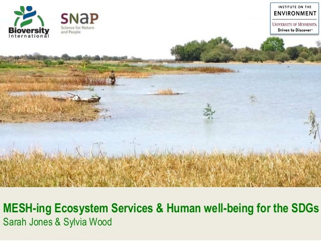 MESH-ing Ecosystem Services & Human well-being for the SDGs Sarah Jones & Sylvia Wood