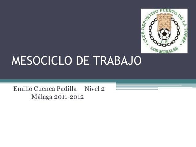 MESOCICLO DE TRABAJOEmilio Cuenca Padilla Nivel 2      Málaga 2011-2012