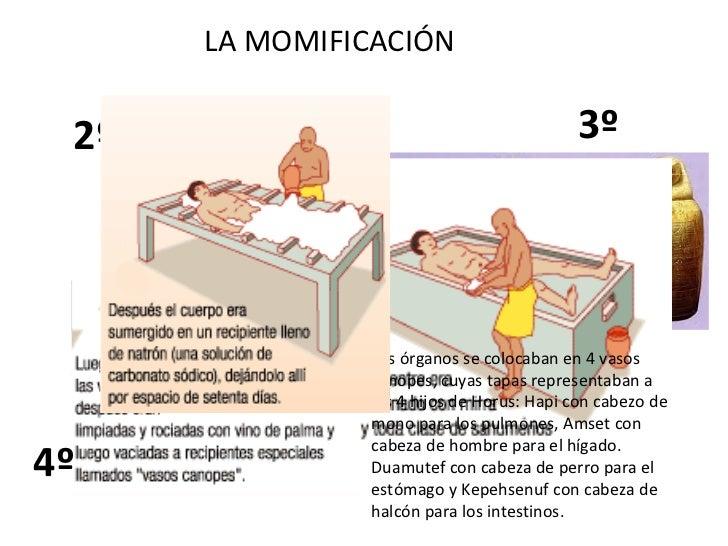 LA MOMIFICACIÓN 1º 2º 3º Los órganos se colocaban en 4 vasos canopes, cuyas tapas representaban a los 4 hijos de Horus: Ha...