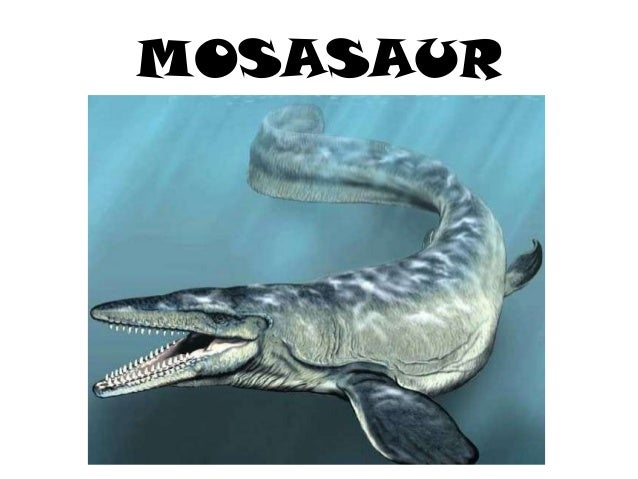 the earth during the mesozoic era or the age of dinosaurs Dinosaurs lived on the earth for about 165 million years during the mesozoic era―the age of reptiles―and mysteriously went extinct 65 million years ago, leaving back their gigantic bones as the evidence of their existence.
