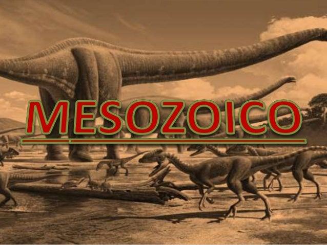 • El Mesozoico es una división que se inició hace 251,0 ± 0,4 millones de años y finalizó hace 65,5 ± 0,3 millones de años...