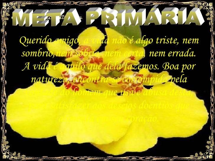 META PRIMÁRIA Querido amigo, a vida não é algo triste, nem sombrio,nem sóbria, nem certa, nem errada. A vida é aquilo que ...