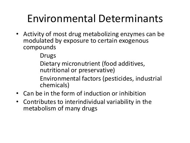 Essay/Term paper: Excretion and elimination of toxicants and their metabolites