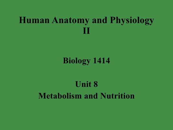 Human Anatomy and Physiology II Biology 1414 Unit 8 Metabolism and Nutrition