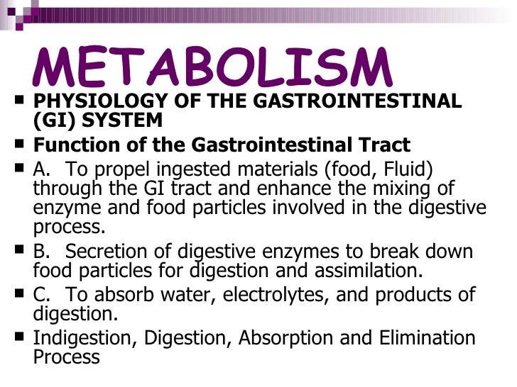 Metabolism DelfiN Slide 3
