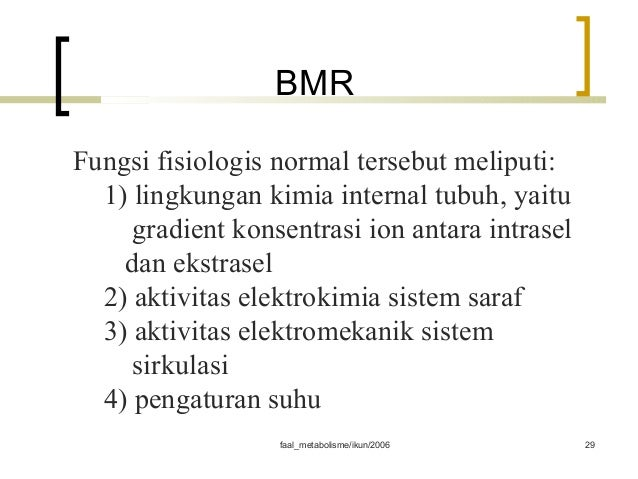 METABOLISME - PowerPoint PPT Presentation