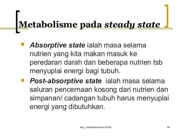 Cara Memanfaatkan Metabolisme Untuk Diet Sehat Efektif dan Alami