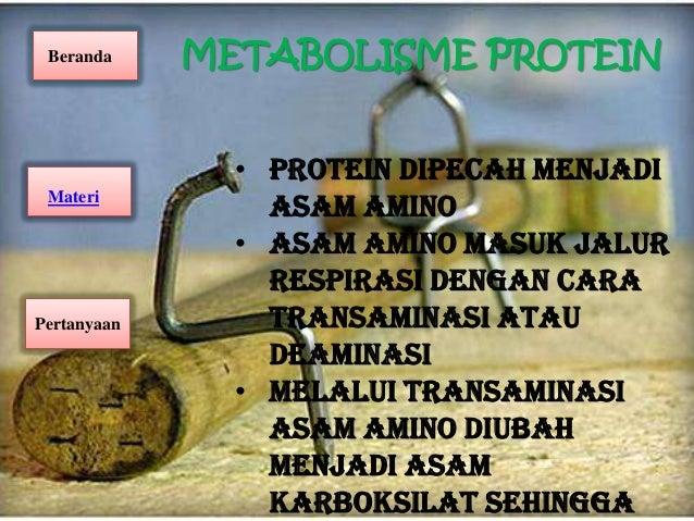 Pengolahan Minyak dan Lemak Nabati