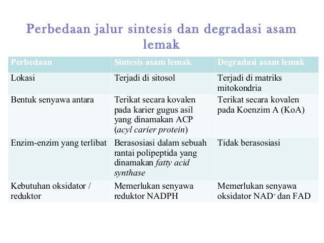 Metabolisme Karbohidrat - mfakhri.lecture.ub.ac.id