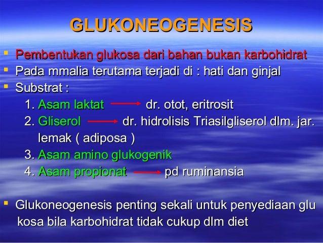 Perubahan Metabolisme Tubuh Selama Kehamilan