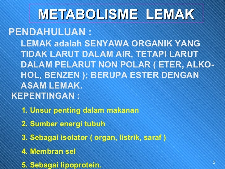 Bagaimana Proses, Jenis – Jenis dan Pengertian Metabolisme