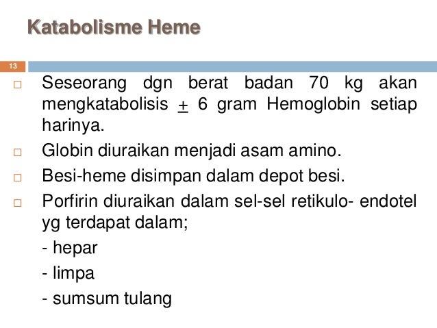 Metabolisme Heme Dan Porfirin New