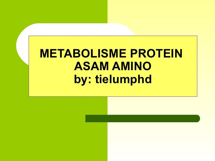 METABOLISME PROTEIN    ASAM AMINO    by: tielumphd