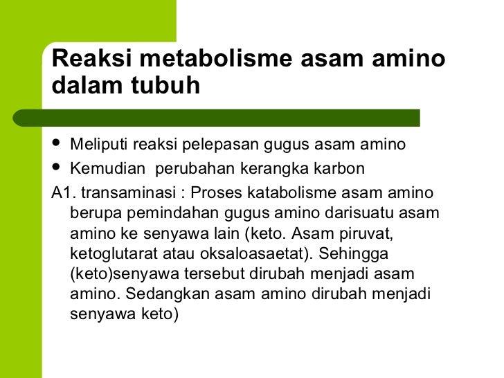 6 metabolisme asam-amino.