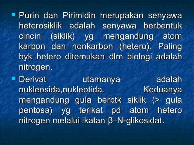 Sejarah Bumi