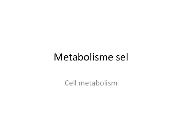 Metabolisme sel Cell metabolism