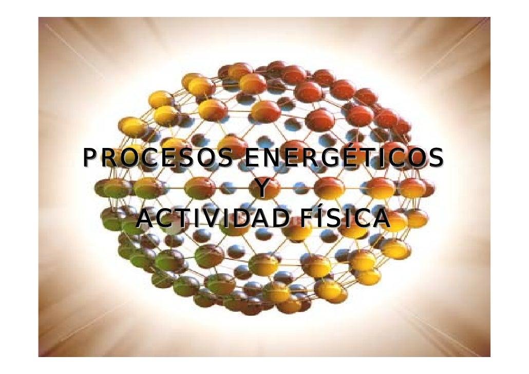 PROCESOS ENERGÉTICOS           Y    ACTIVIDAD FÍSICA