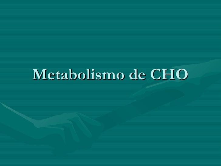 Metabolismo de CHO