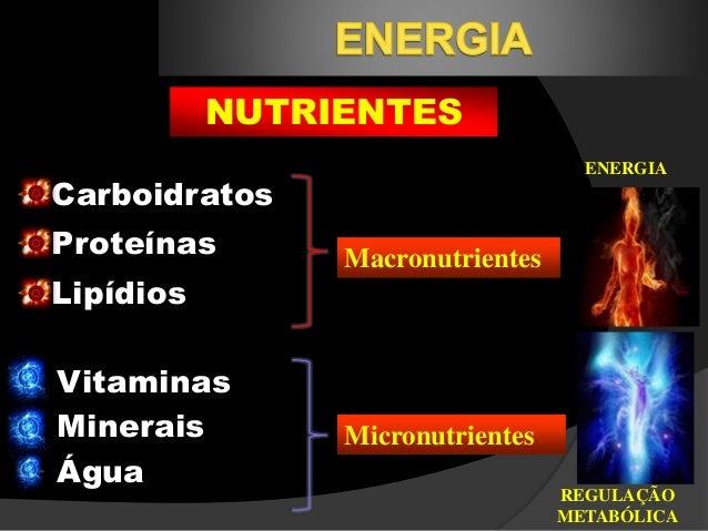 explique la funcion del atp en el metabolismo celular cura