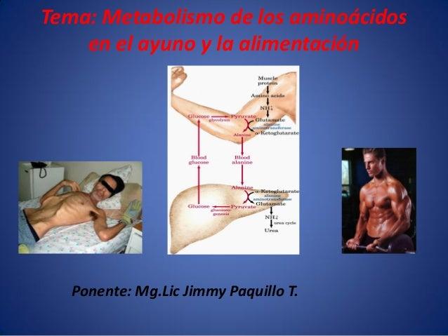 Tema: Metabolismo de los aminoácidos en el ayuno y la alimentación  Ponente: Mg.Lic Jimmy Paquillo T.