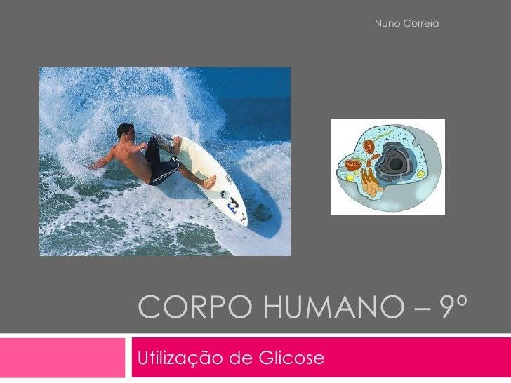 Nuno Correia     CORPO HUMANO – 9º Utilização de Glicose