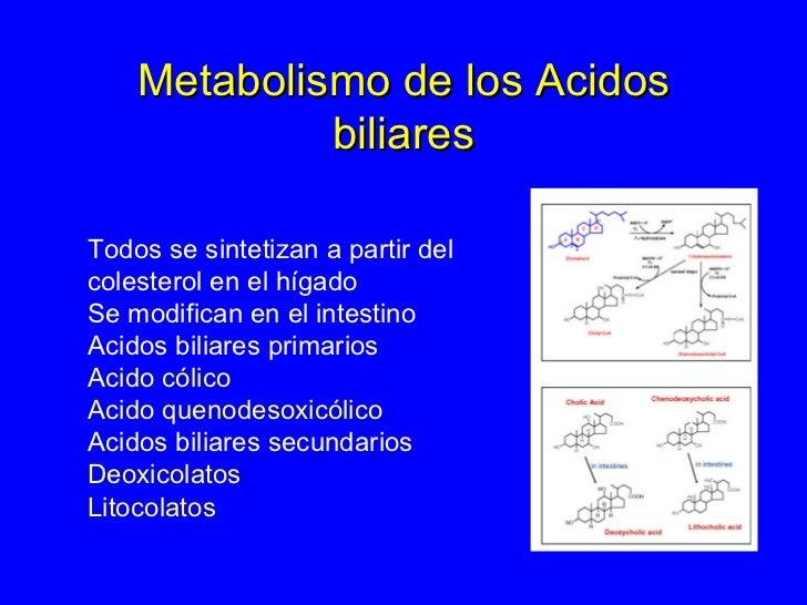 Alguna vez oiste Acelerar metabolismo es tu mayor apuesta para crecer