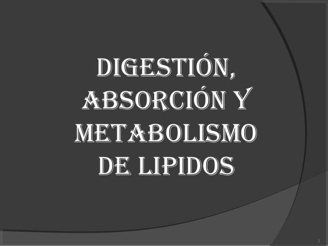 DIGESTIÓN, ABSORCIÓN Y METABOLISMO DE LIPIDOS 1