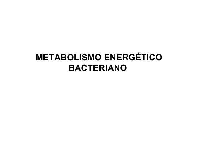 METABOLISMO ENERGÉTICO BACTERIANO