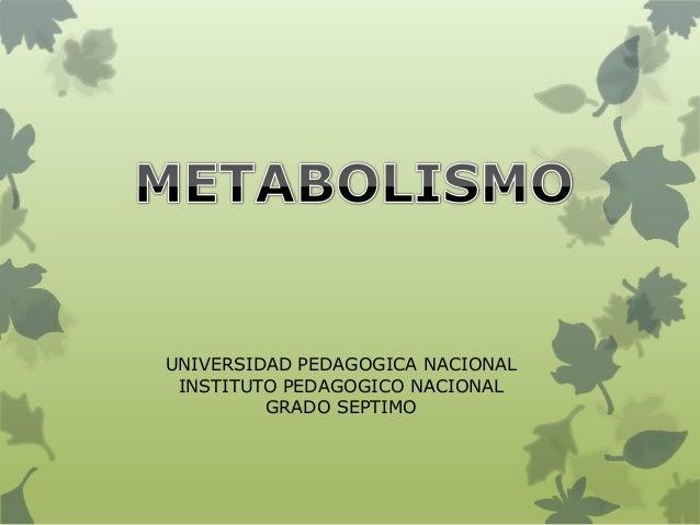 UNIVERSIDAD PEDAGOGICA NACIONAL INSTITUTO PEDAGOGICO NACIONAL GRADO SEPTIMO