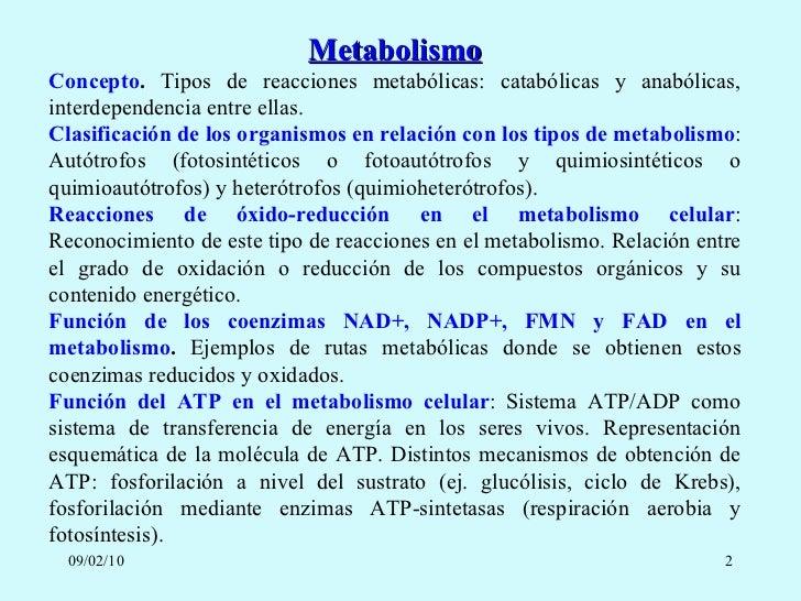 Niños y como acelerar el metabolismo para adelgazar