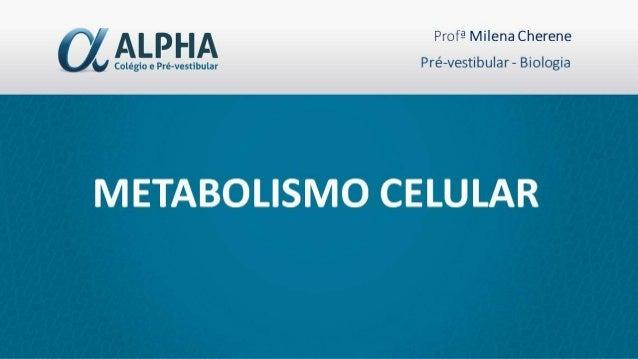"""Alguns pontos importantes....... Vamos pensar no assunto de forma """"holística""""...Metabolismo x diversidade x evolução• Deve..."""