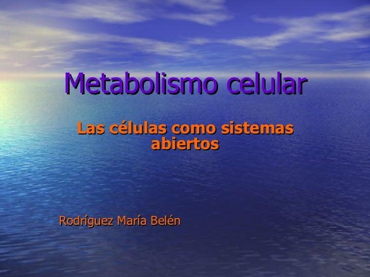 Metabolismo celular Las células como sistemas abiertos Rodríguez María Belén